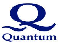 Quantum Stabilizers